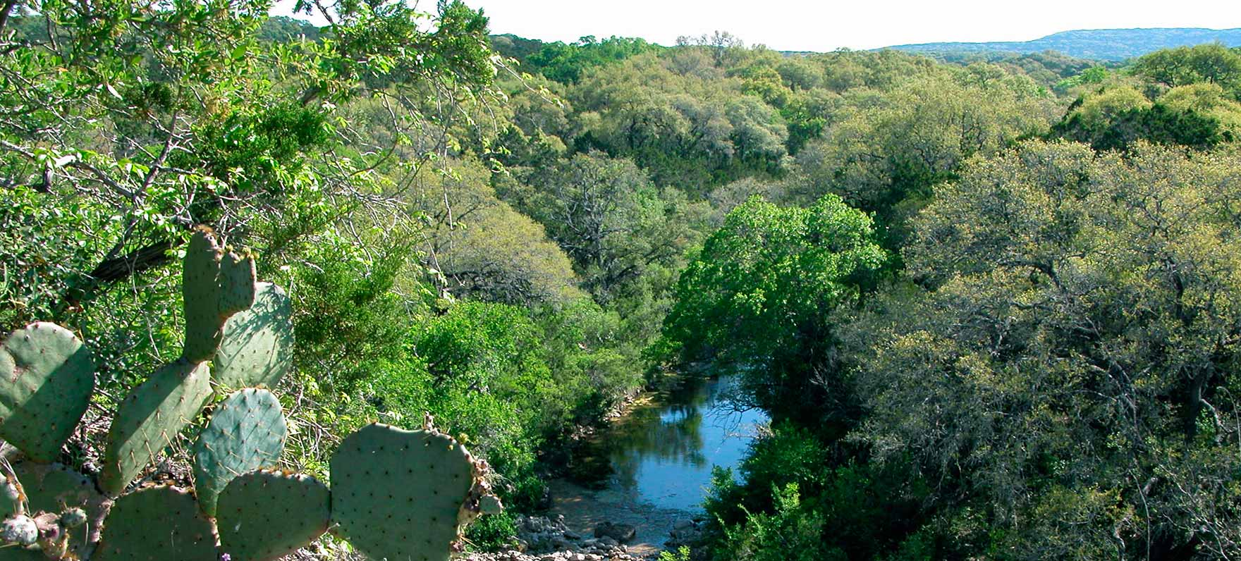 Government Canyon State Natural Area Texas Parks