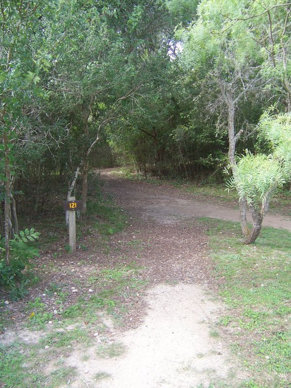 Hill Country State Natural Area Primitive Campsites (Walk ...