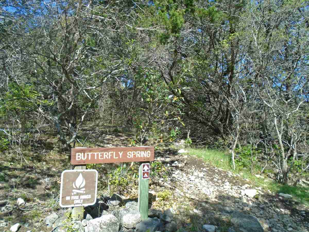 Entry to Butterfly Springs camping area.