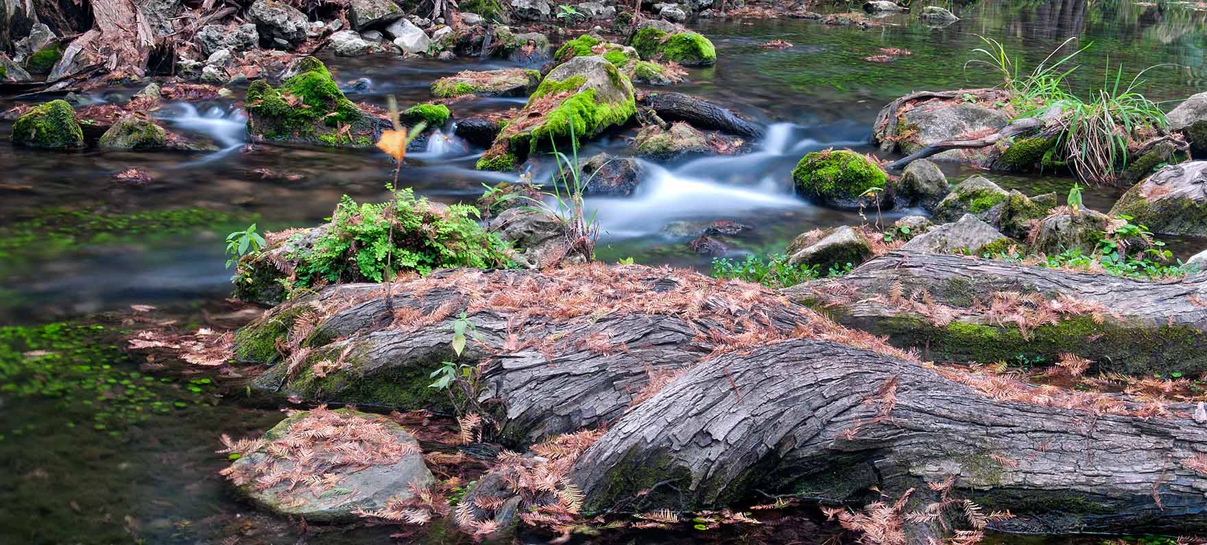 Honey Creek State Natural Area — Texas Parks & Wildlife ...