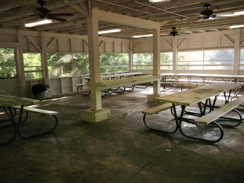Inside are picnic tables, lights, and ceiling fans.