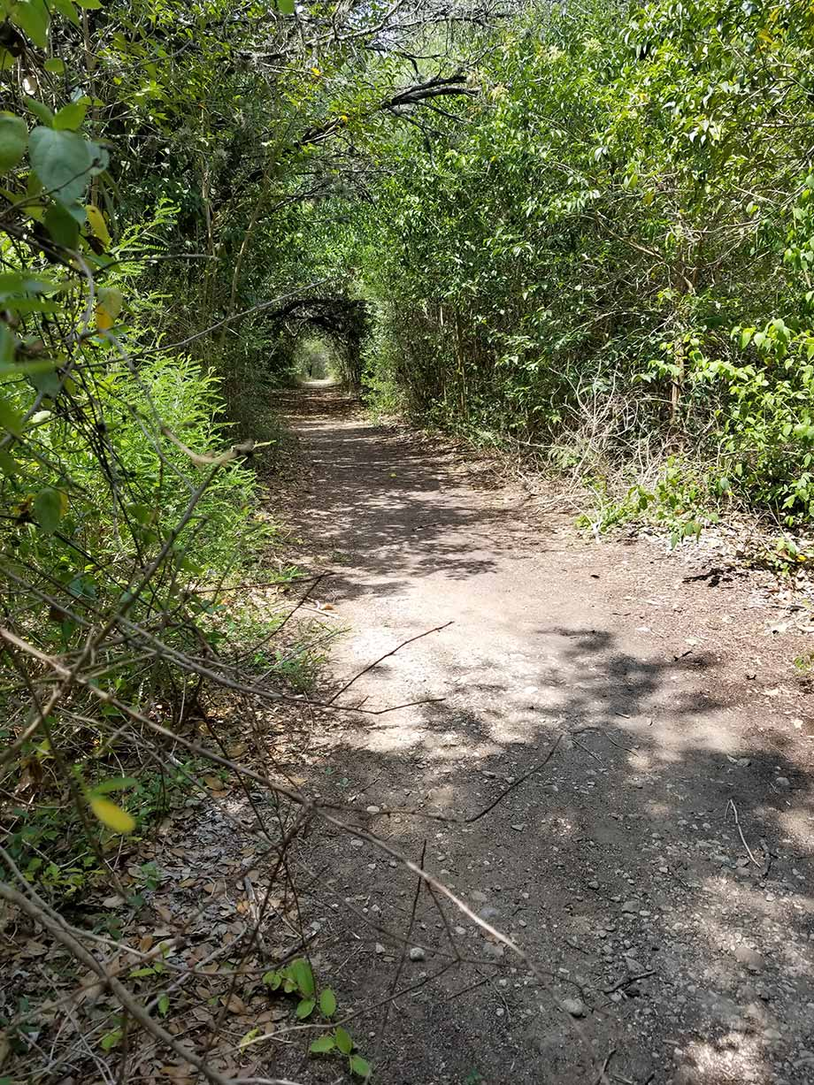 Caswell Nature Trail - Blanco State Park