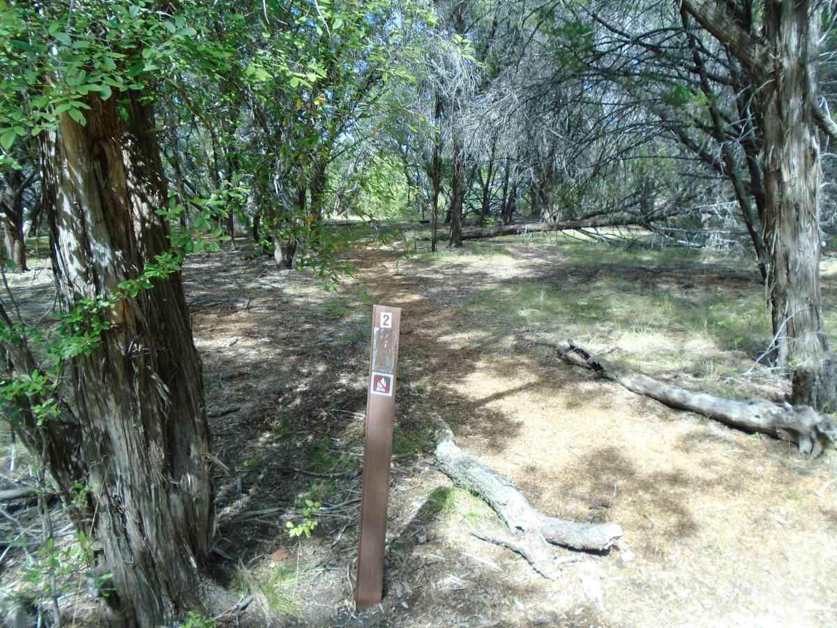 Hike-in Primitive Campsite #2.