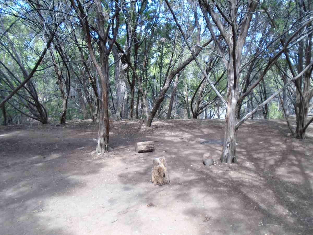 Hike-in Primitive Campsite #3.