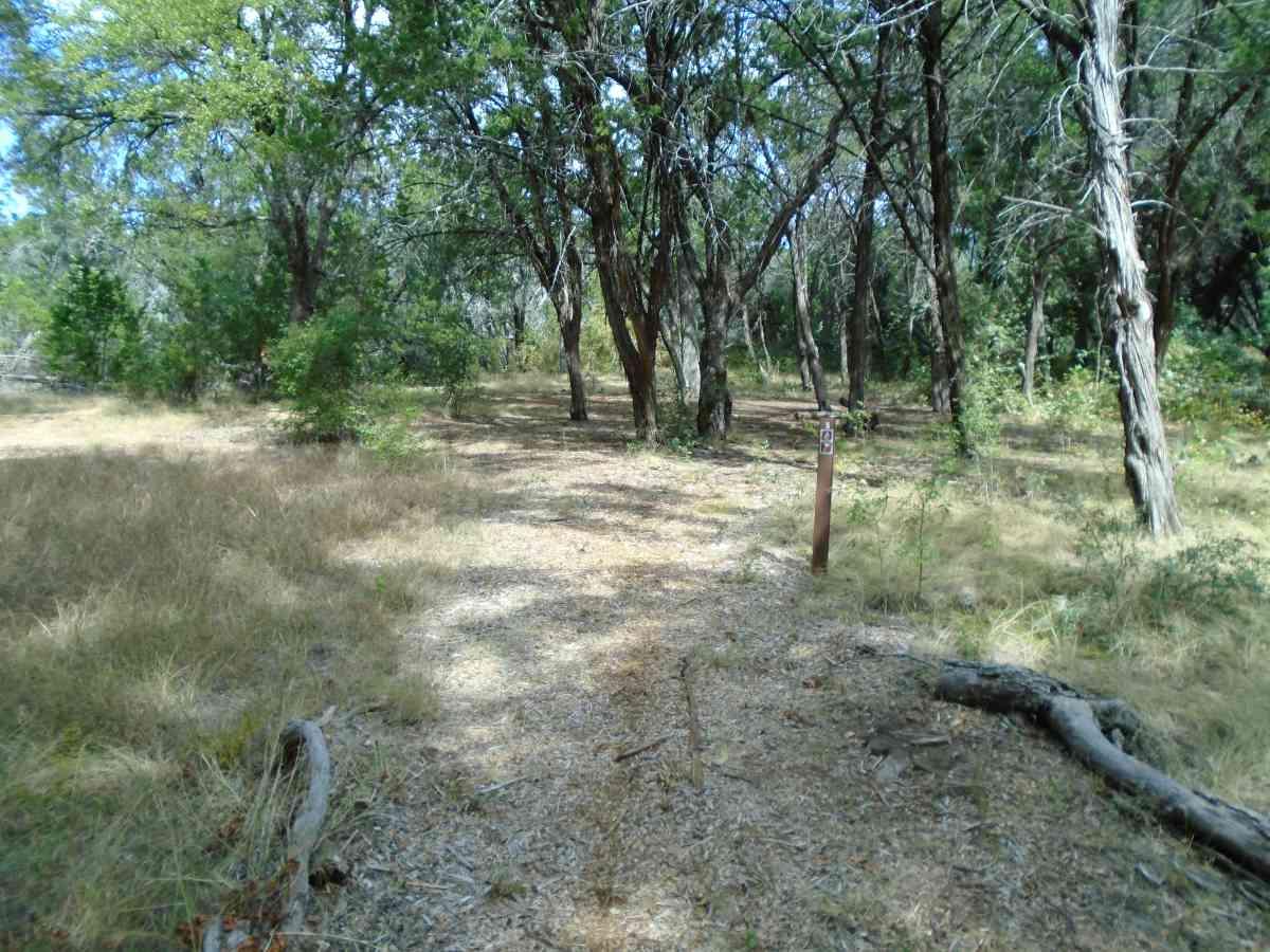 Hike-in Primitive Campsite #5.