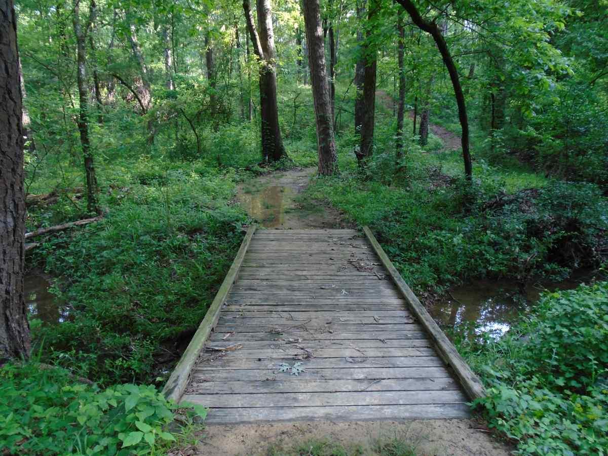 Lake Bob Sandlin State Park Hike-in Primitive Camping Area ...