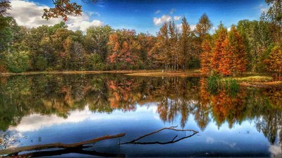 Fall foliage reflecting in the park's lake
