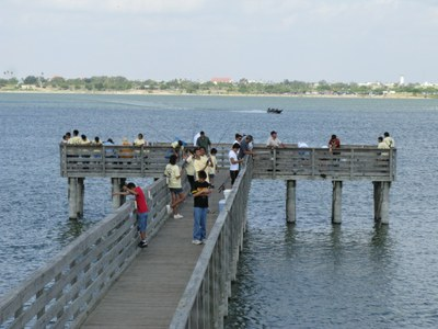 Lake Liv fish pier