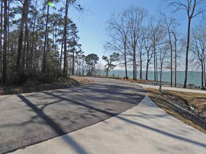 The view from Piney Shores #51