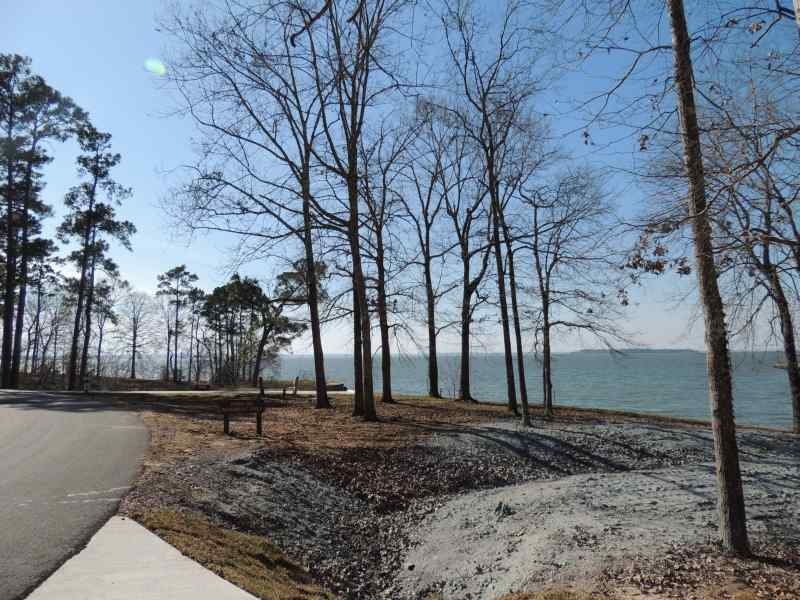 The view from Piney Shores #52
