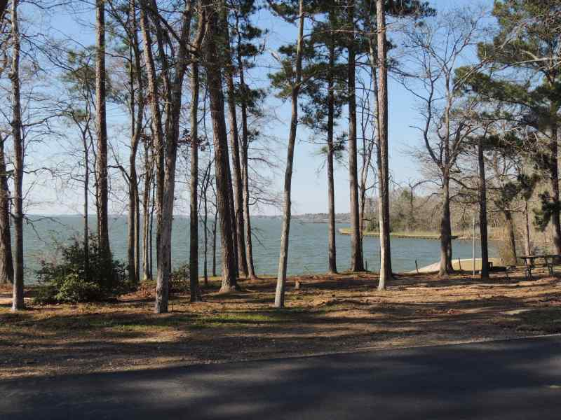 The view from Piney Shores #60
