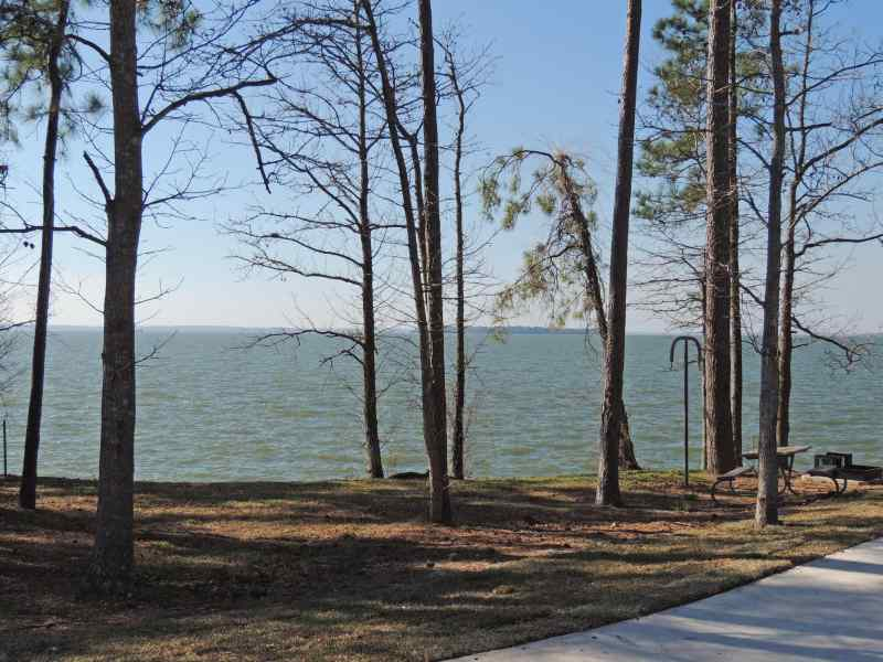 The view from Piney Shores #61