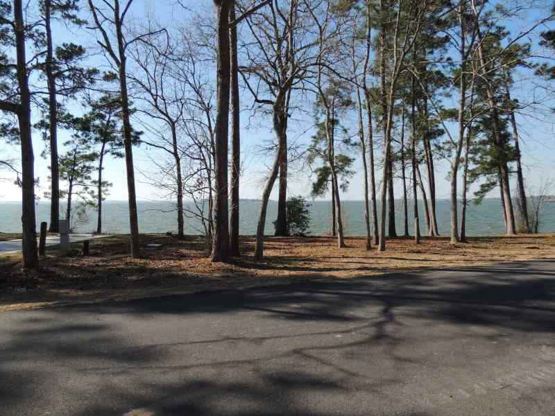 The view from Piney Shores #63