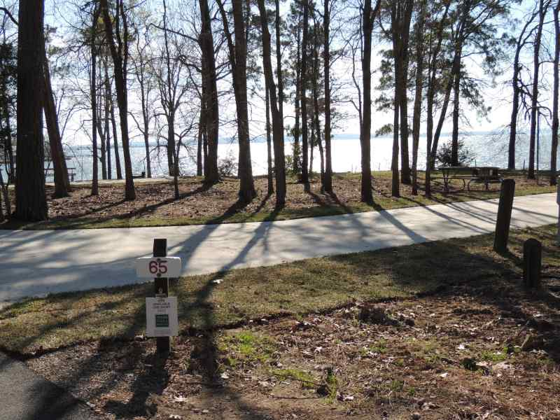 The view from Piney Shores #65