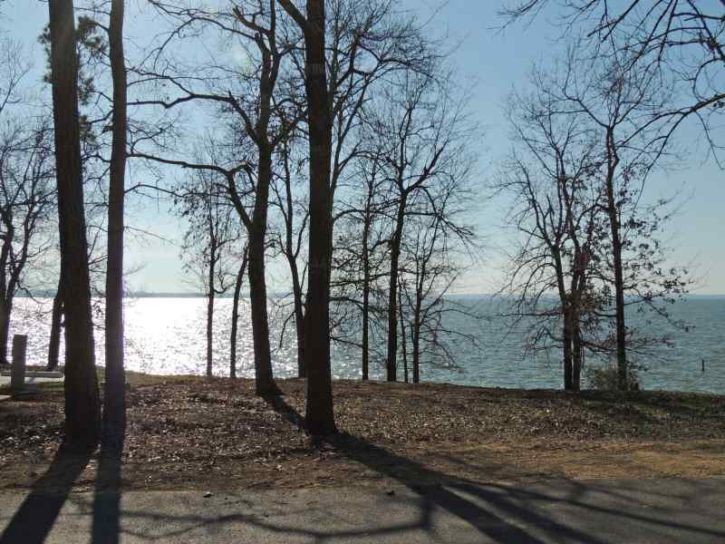 The view from Piney Shores #70