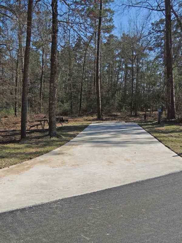 Red Oak Loop Site #41