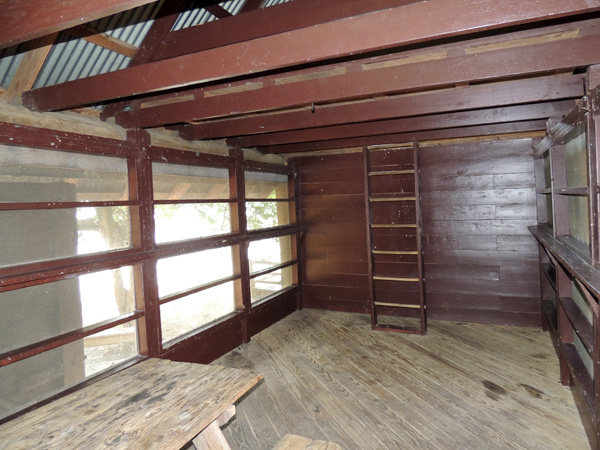 View of the inside (back) of a Screened Shelter, and the ladder to the loft.