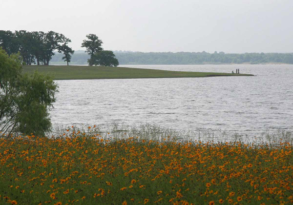 View of lake on a cloudy day with wildflowers in the foreground and anglers in the back.