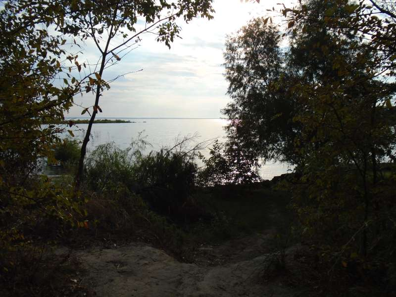 View of the lake from campsite #55 in the Spring Point Camping Loop.