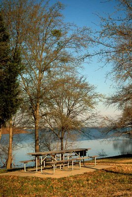 View of picnic table beside the lake