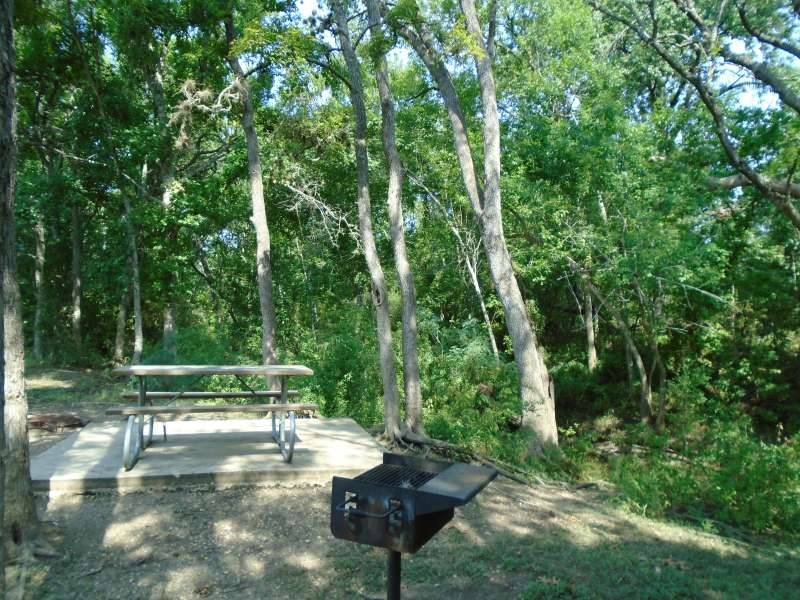 Campsite #11, with water & electricity, in the Clearfork Creek Camping Area.