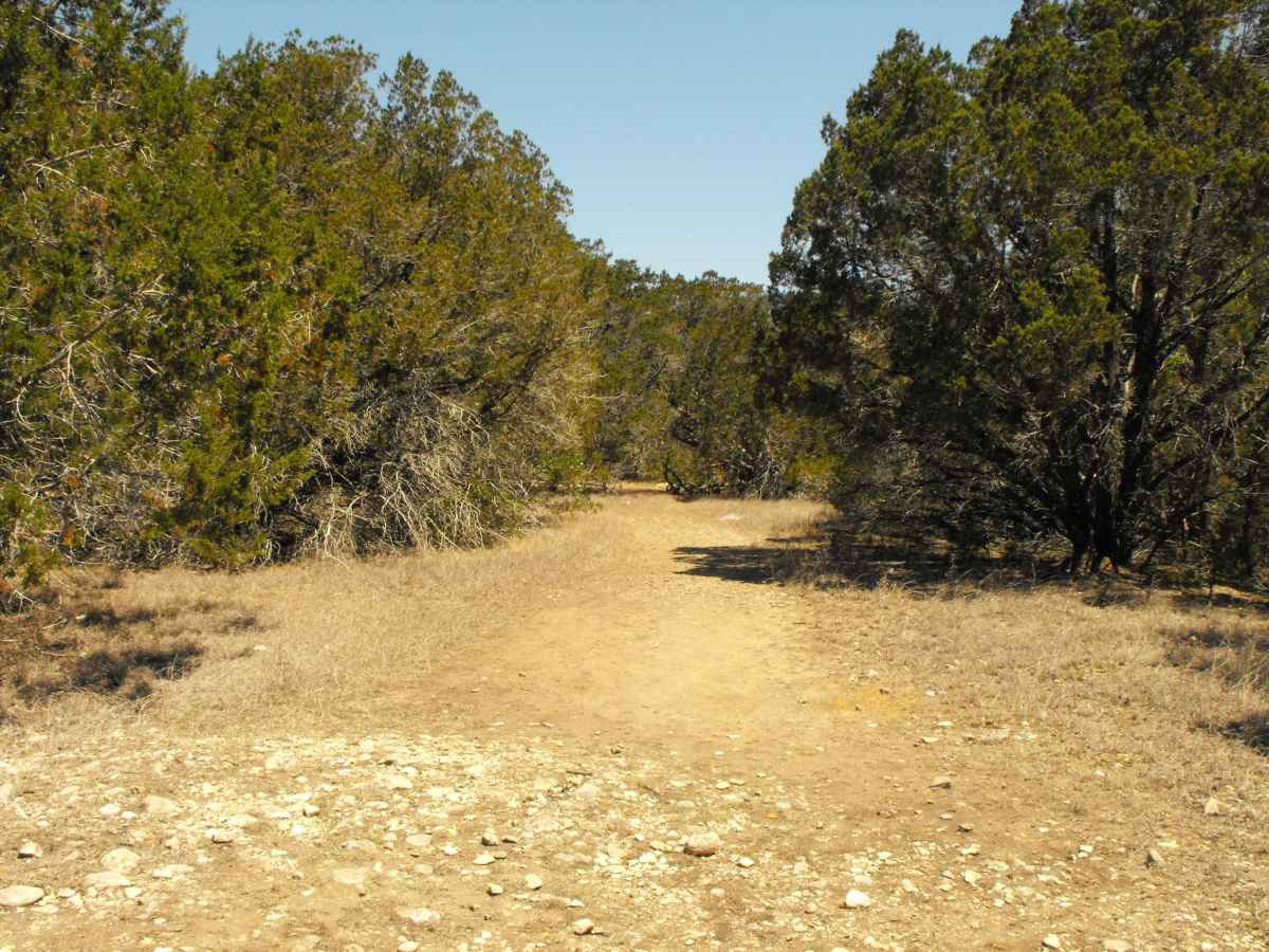 Another view of Primitive Camping Area A.