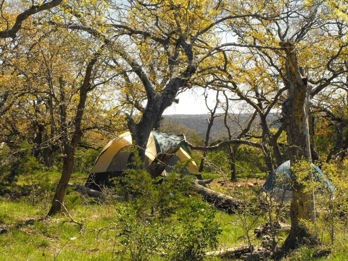 Another view of Primitive Camping Area B with tents.
