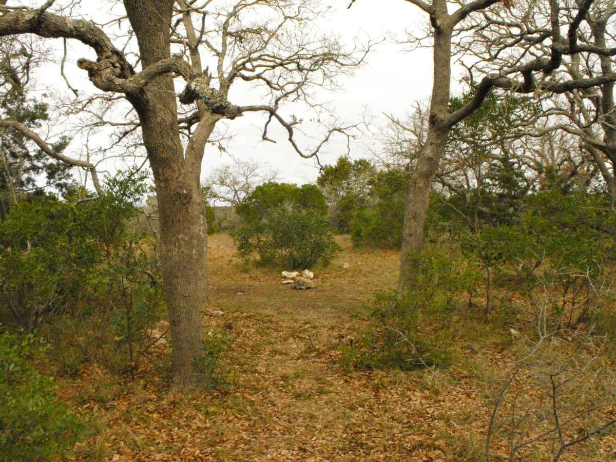 Another view of Primitive Camping Area F.