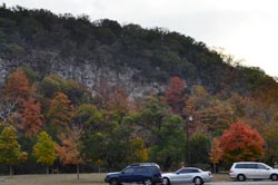 fall foliage picture from November 20, 2011