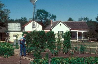 Gardener working in the garden in front of historical buildings
