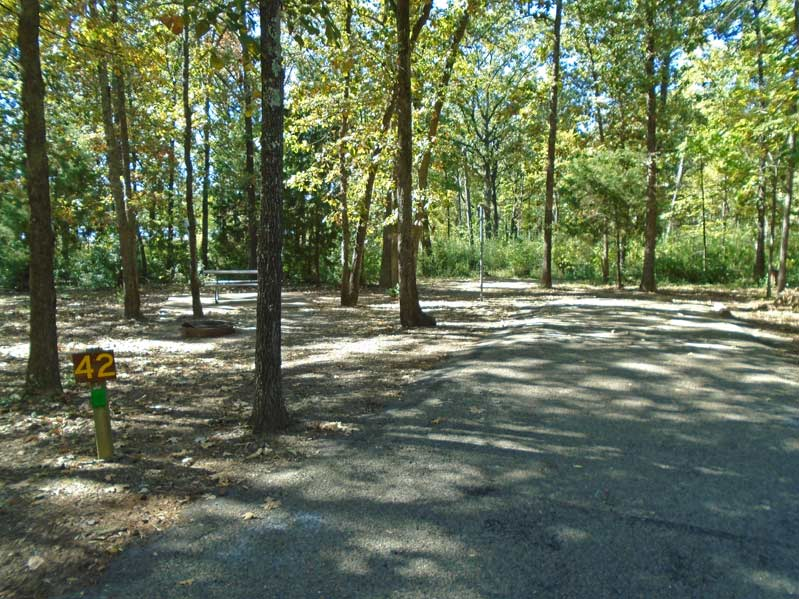 Martin Creek Lake State Park Standard Campsites Texas
