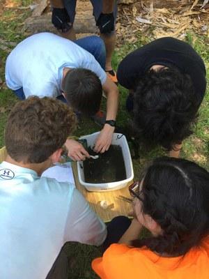 Kids poking in a bucket of soil