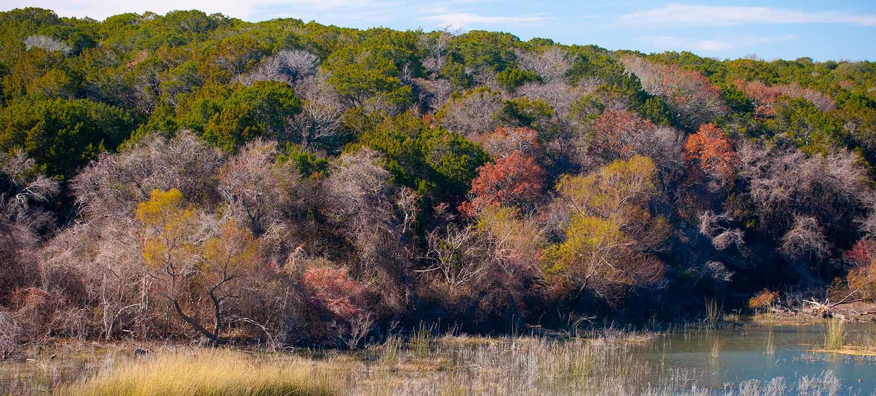 meridian state park  u2014 texas parks  u0026 wildlife department