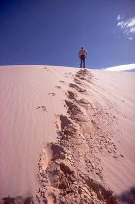 Park employee standing atop sand dune