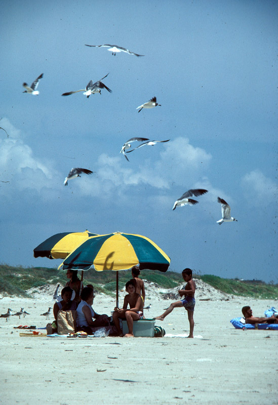 Mustang Island State Park Primitive Campsites (Drive-up ...
