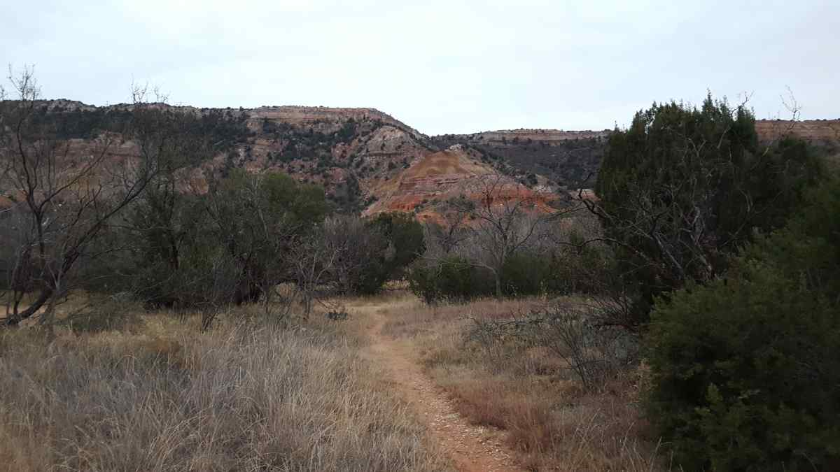 A trail from the Youth Group Camping Area.