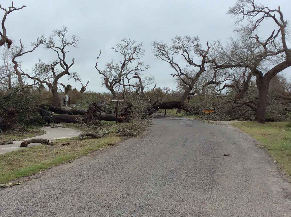Hurricane Harvey 2017  U2014 Texas Parks  U0026 Wildlife Department