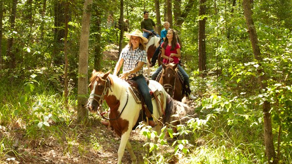 Family riding horseback through a scenic area.