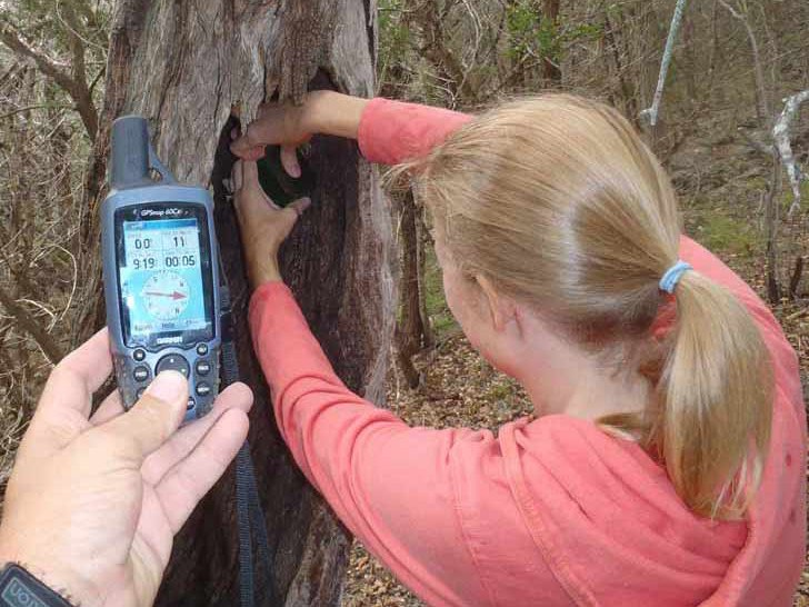 woman pulling geocache from a hole in a tree trunk