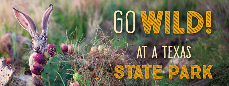 Go wild at a Texas State Park