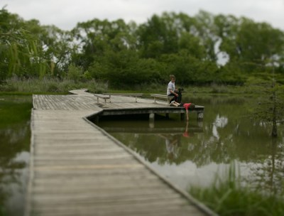 Boardwalk over marsh with boy and dog sitting