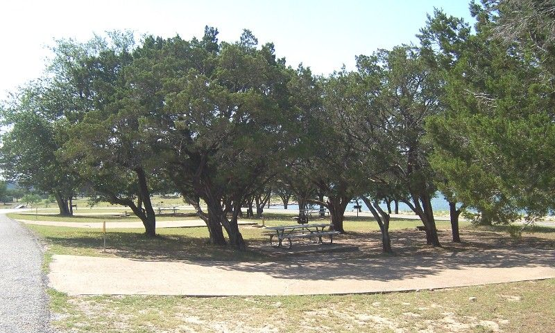 Campsite in Lakeview area