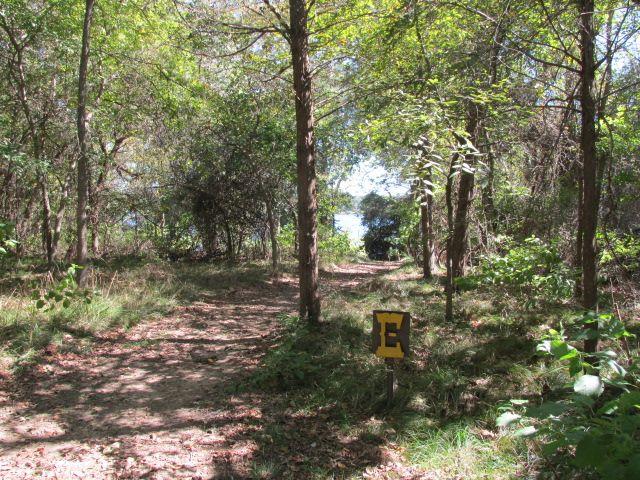 Purtis Creek State Park Primitive Hike In 0 65 Miles