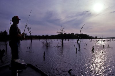 Angler fishing at sunset in the lake