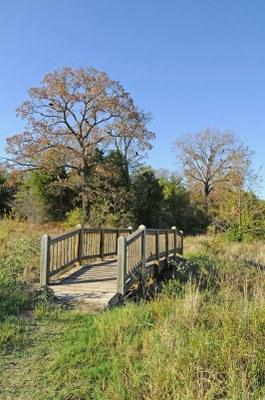 Scenic shot of trail bridge.