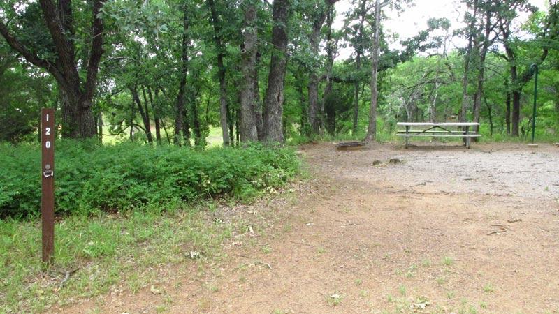 Site #120 in the Wild Plum area.