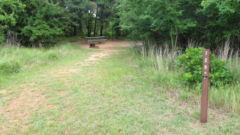 Site #129 in the Wild Plum area.