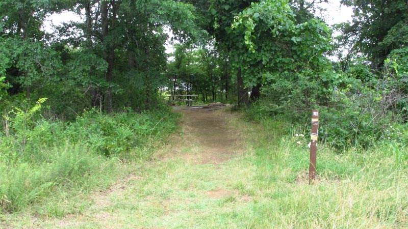 Site #130 in the Wild Plum area.