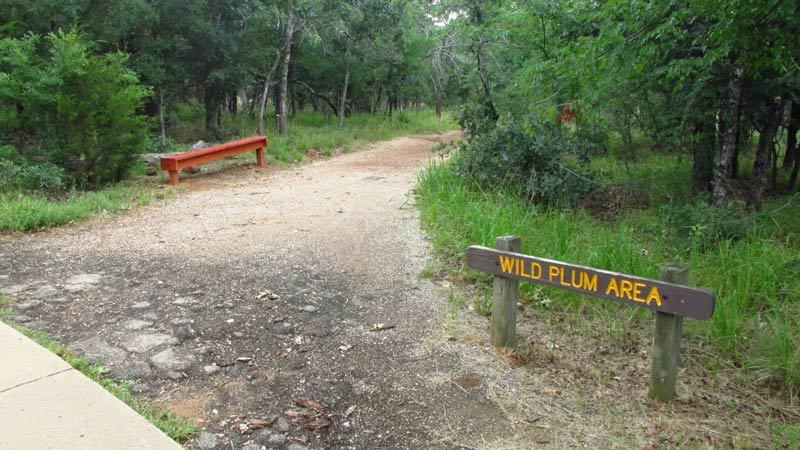 Wild Plum Area