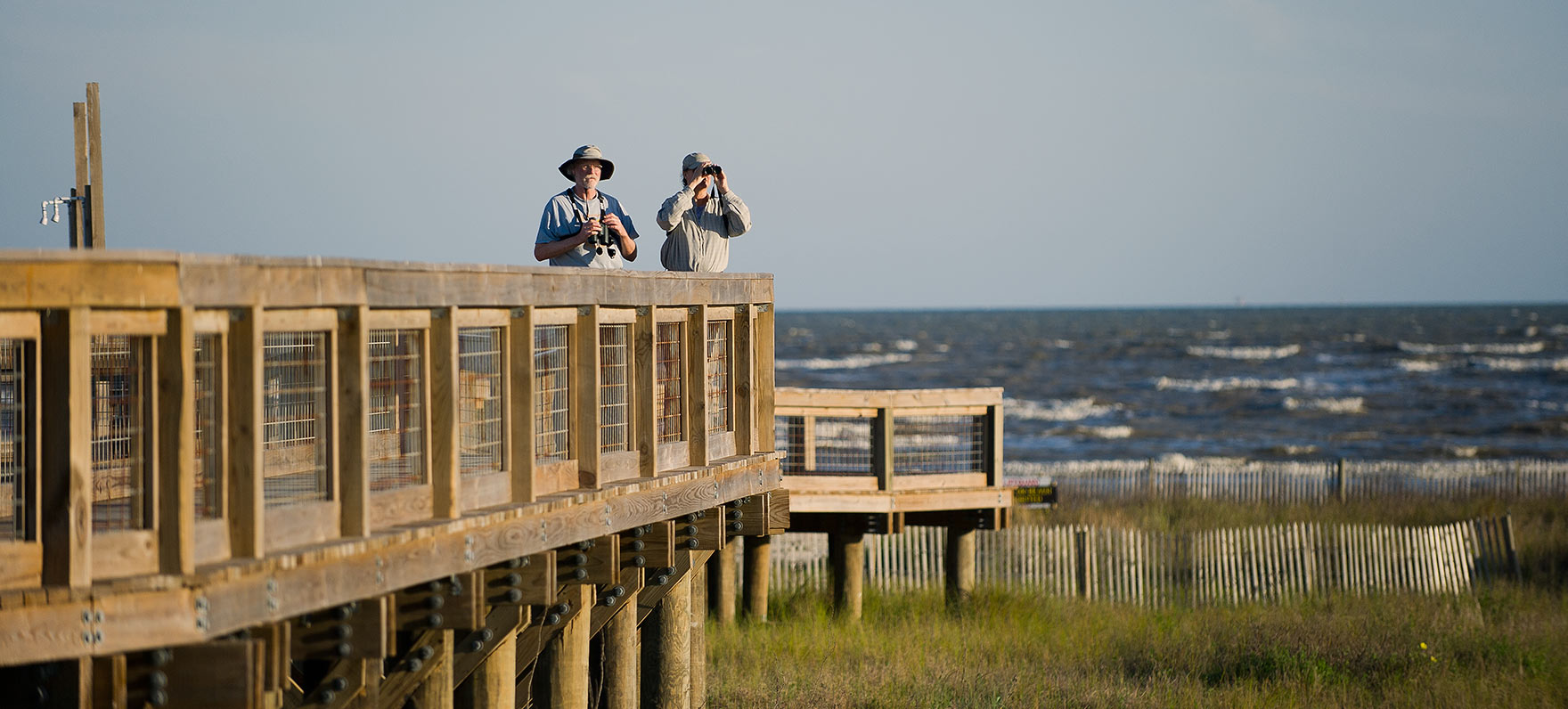 Where marsh grasses meet the surf, you'll find an abundance of life displayed along a five-mile stretch of beach and wetlands.